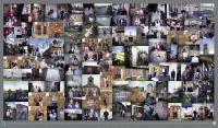 Focus à OSTICHES 2017